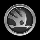 Установка стробоскопов на автомобиль Škoda