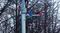 Световая балка Шериф - фото 16879